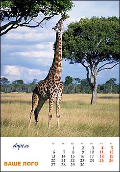 Тематическая подборка изображений для изготовления календарей